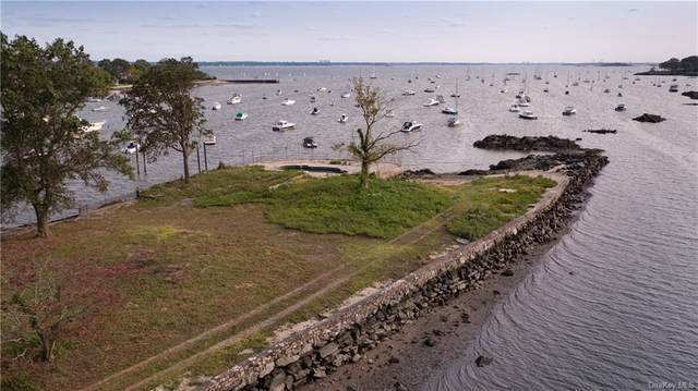 1350 Greacen Point Road, Mamaroneck, NY 10543 (MLS #H6065680) :: Kendall Group Real Estate | Keller Williams