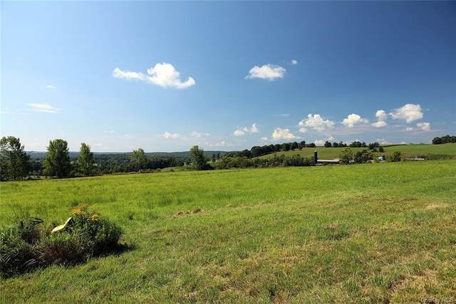 825 County Route 164, Callicoon, NY 12723 (MLS #H6065743) :: Kevin Kalyan Realty, Inc.