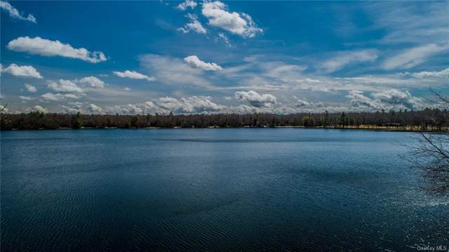 Lot 9 Lake Drive, Highland Lake, NY 12743 (MLS #H6066023) :: Mark Seiden Real Estate Team