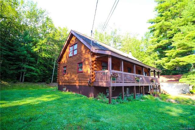 120 Beaver Lake Road, Rock Hill, NY 12775 (MLS #H6066079) :: Nicole Burke, MBA   Charles Rutenberg Realty