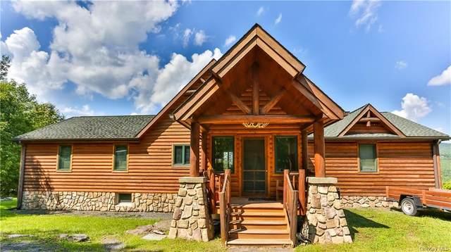 103 Goff Drive, Prattsville, NY 12468 (MLS #H6066201) :: Frank Schiavone with William Raveis Real Estate