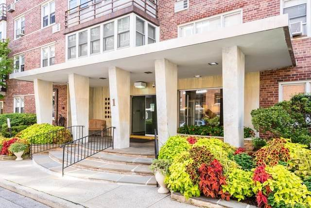 1 Washington Square 5F, Larchmont, NY 10538 (MLS #H6066213) :: Nicole Burke, MBA | Charles Rutenberg Realty