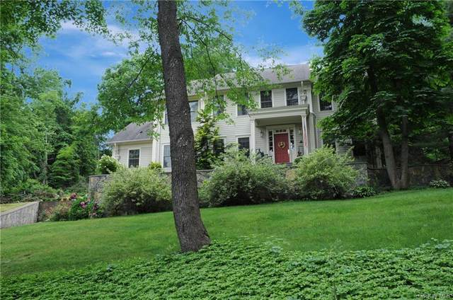 9 Mountain View Road, Patterson, NY 12563 (MLS #H6066364) :: William Raveis Baer & McIntosh