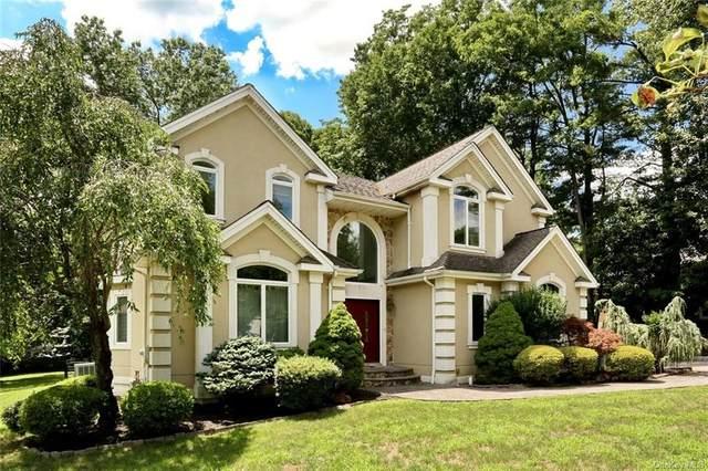 149 Pine Tree Lane, Tappan, NY 10983 (MLS #H6066414) :: William Raveis Baer & McIntosh