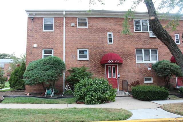 183 Drake Avenue 2N, New Rochelle, NY 10805 (MLS #H6066579) :: Nicole Burke, MBA   Charles Rutenberg Realty