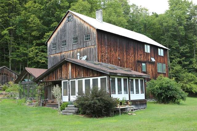 1515 Equinunk Creek Road, Other, PA 18417 (MLS #H6066656) :: Mark Boyland Real Estate Team