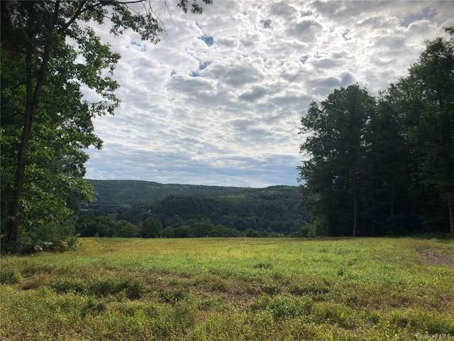 Conklin Hill Rd, Damascus, NY 18415 (MLS #H6066911) :: Kendall Group Real Estate | Keller Williams
