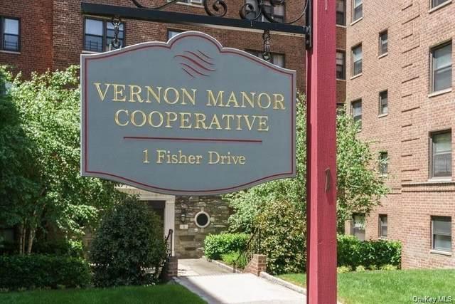 1 Fisher Drive #218, Mount Vernon, NY 10552 (MLS #H6066927) :: Nicole Burke, MBA | Charles Rutenberg Realty