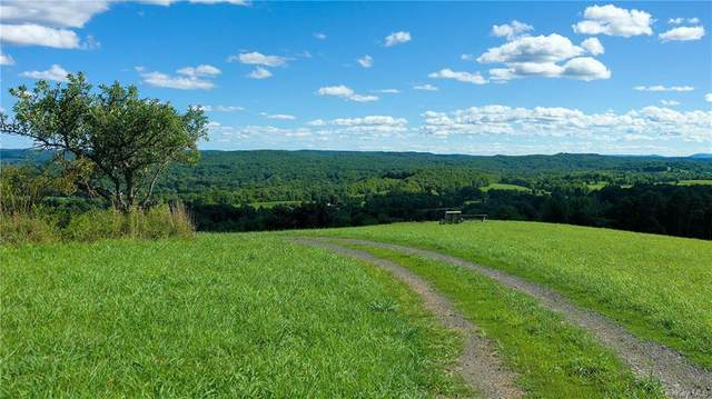 1347 Hollow Road, Clinton Corners, NY 12514 (MLS #H6066980) :: Kendall Group Real Estate | Keller Williams