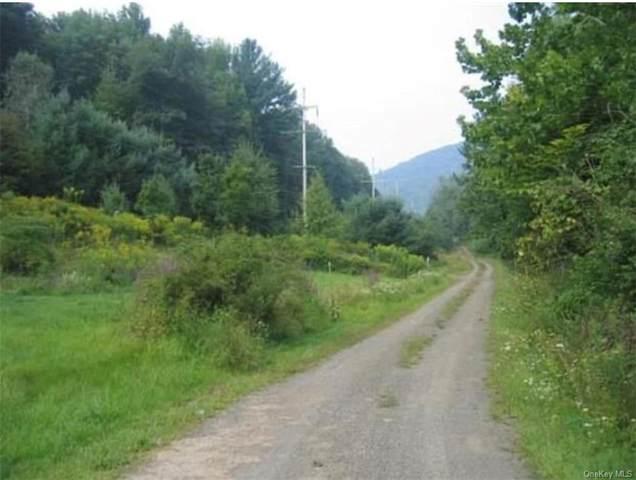 Timber Ridge Road, Shandaken, NY 12480 (MLS #H6067038) :: Frank Schiavone with William Raveis Real Estate