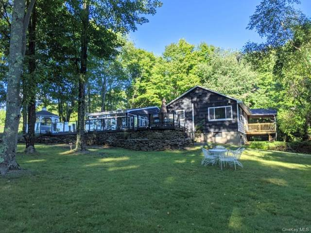 10 W Delaware Place Extension, Smallwood, NY 12778 (MLS #H6067127) :: William Raveis Baer & McIntosh
