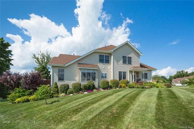 19 Alta Drive, Wappingers Falls, NY 12590 (MLS #H6067217) :: Mark Seiden Real Estate Team