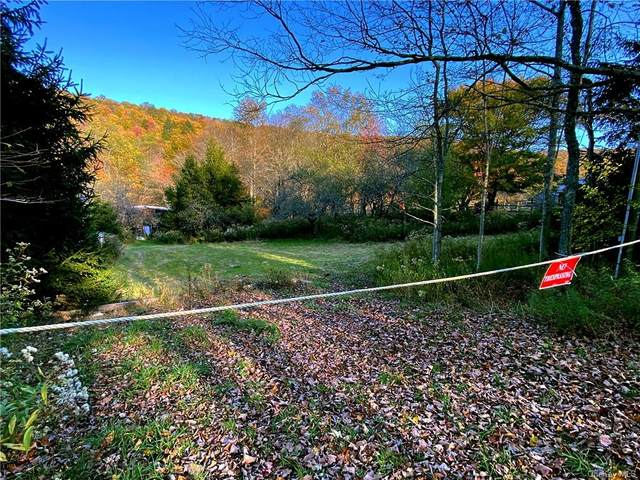 454 Benton Hollow Road, Livingston Manor, NY 12758 (MLS #H6067332) :: Nicole Burke, MBA | Charles Rutenberg Realty