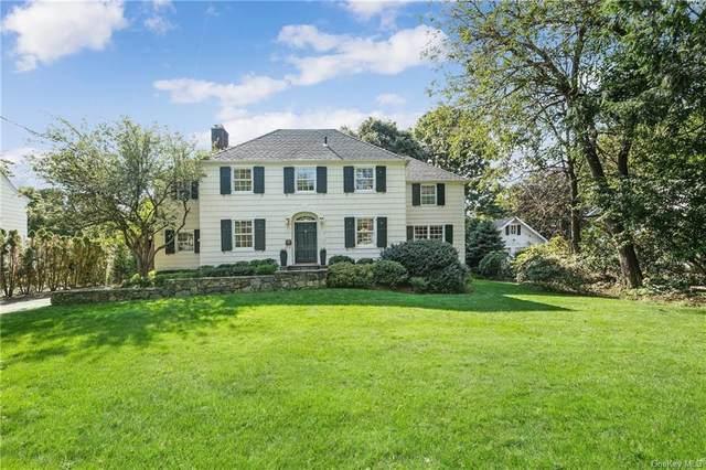6 Pine Lane, Rye, NY 10580 (MLS #H6067416) :: Nicole Burke, MBA   Charles Rutenberg Realty