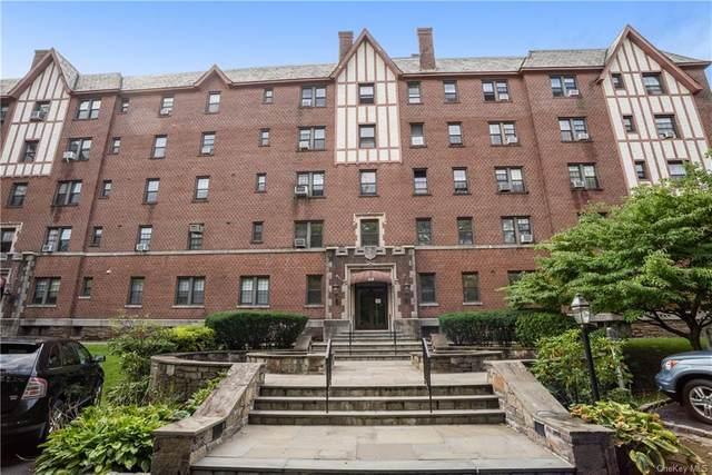 620 Pelhamdale Avenue #44, Pelham, NY 10803 (MLS #H6067420) :: William Raveis Baer & McIntosh
