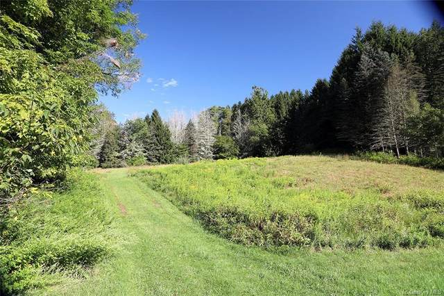 00 State Route 52A, Callicoon, NY 12723 (MLS #H6067540) :: Kevin Kalyan Realty, Inc.