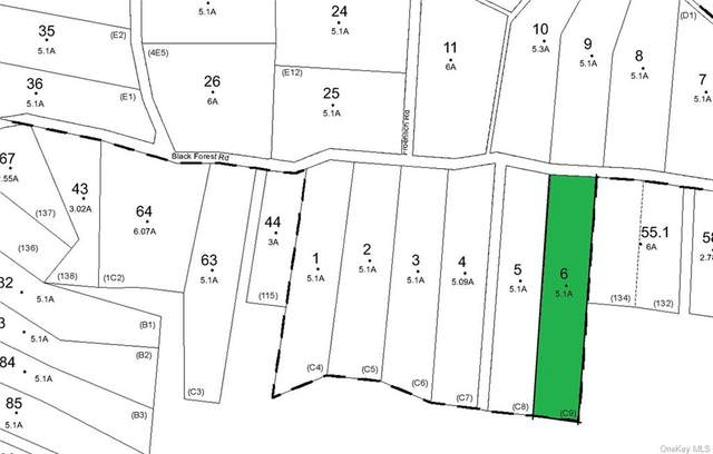 Lot 6 Main Black Forest Road, Glen Spey, NY 12737 (MLS #H6067547) :: Frank Schiavone with William Raveis Real Estate