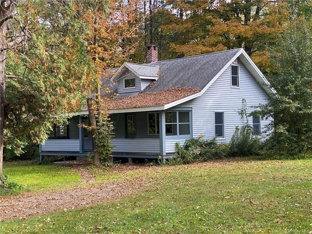 516 Station Road, Shandaken, NY 12480 (MLS #H6067654) :: Frank Schiavone with William Raveis Real Estate