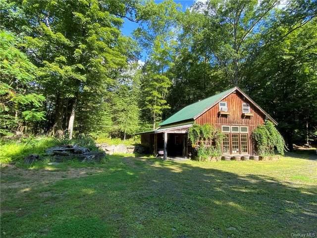 10 Crispell Road, Olivebridge, NY 12461 (MLS #H6067659) :: Frank Schiavone with William Raveis Real Estate