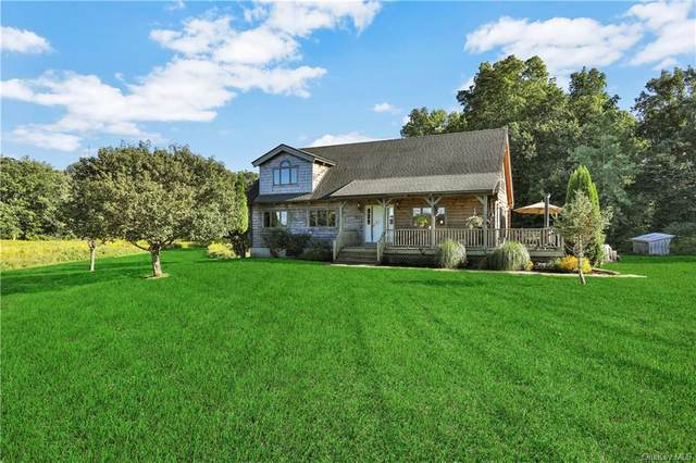 447 Pine Bush Road, Stone Ridge, NY 12484 (MLS #H6067905) :: William Raveis Baer & McIntosh