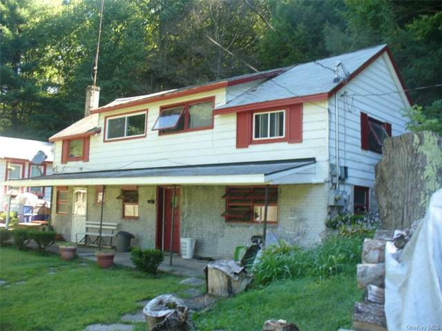 722 Old Route 17, Monticello, NY 12701 (MLS #H6068025) :: Cronin & Company Real Estate