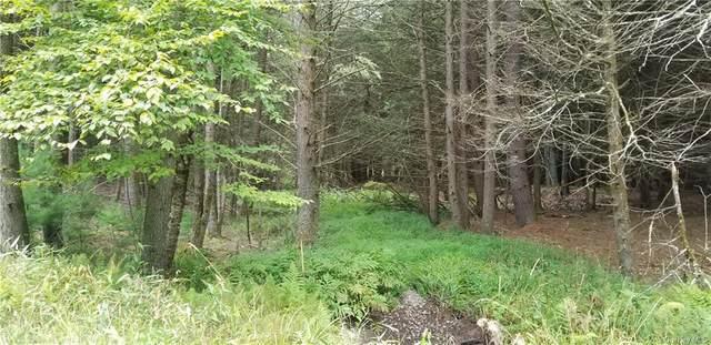 Lot #18 Bear Run Road, Narrowsburg, NY 12764 (MLS #H6068151) :: William Raveis Baer & McIntosh