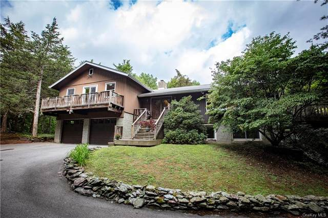 110 Carter Road, Pleasant Valley, NY 12569 (MLS #H6068168) :: Frank Schiavone with William Raveis Real Estate