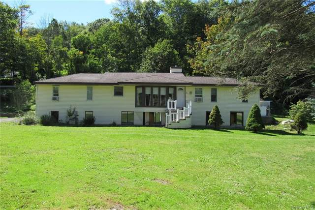 21 Old Post Rd 1, Millerton, NY 12546 (MLS #H6068188) :: Frank Schiavone with William Raveis Real Estate
