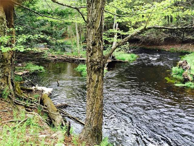 Misty Acres Lot 3B, Bethel, NY 12720 (MLS #H6068348) :: William Raveis Baer & McIntosh