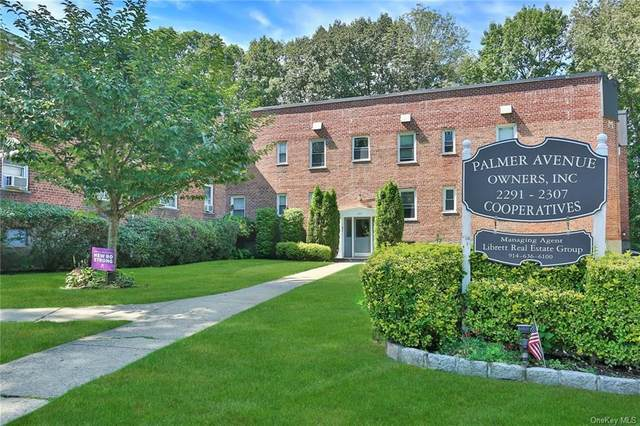 2291 Palmer Avenue R, New Rochelle, NY 10801 (MLS #H6068584) :: Nicole Burke, MBA   Charles Rutenberg Realty