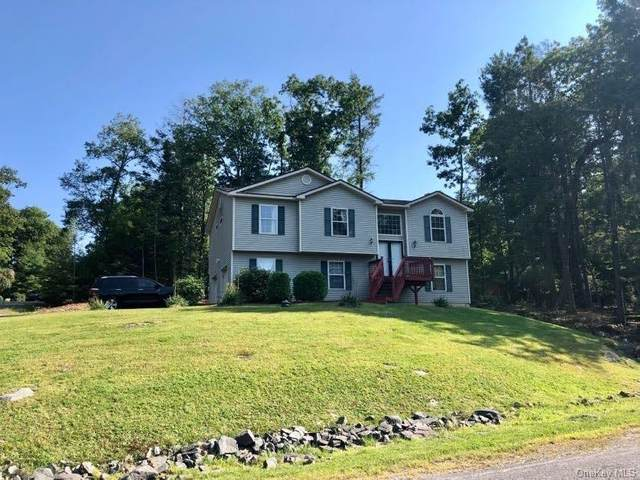 73 Manchester Road, Rock Hill, NY 12775 (MLS #H6068594) :: Keller Williams Points North - Team Galligan