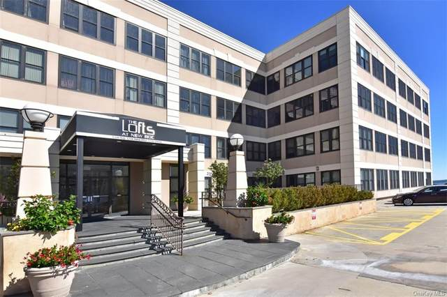 100 New Roc City Place #409, New Rochelle, NY 10801 (MLS #H6068679) :: William Raveis Baer & McIntosh