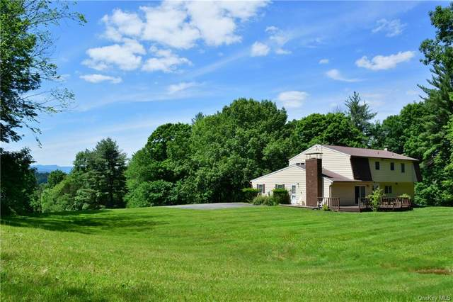 2991 State Route 209, Kingston, NY 12401 (MLS #H6068730) :: William Raveis Baer & McIntosh