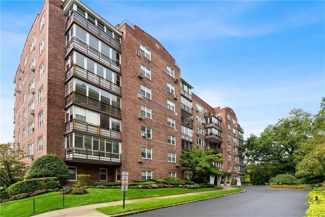 3 Washington Square 2C, Larchmont, NY 10538 (MLS #H6069182) :: Frank Schiavone with William Raveis Real Estate