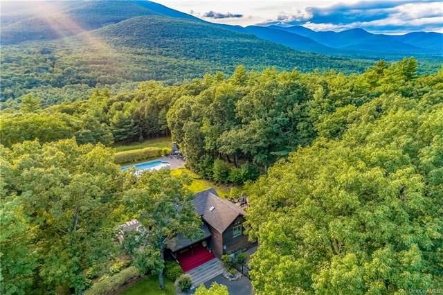 248 Acorn Hill Road, Olivebridge, NY 12461 (MLS #H6069326) :: Frank Schiavone with William Raveis Real Estate