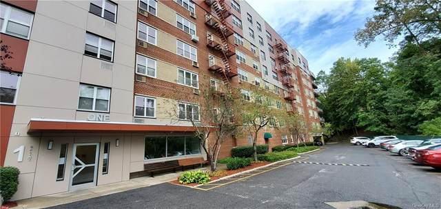 1 Balint Drive #668, Yonkers, NY 10710 (MLS #H6069337) :: Mark Seiden Real Estate Team