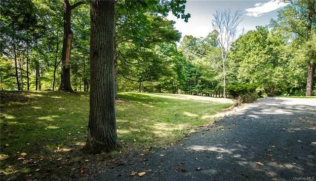 854 Bradley Parkway, Blauvelt, NY 10913 (MLS #H6069349) :: Corcoran Baer & McIntosh