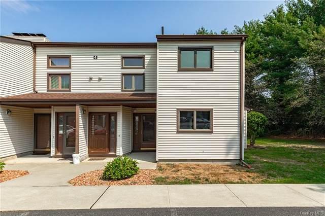 125 Stringham Road #47, Lagrangeville, NY 12540 (MLS #H6069547) :: William Raveis Baer & McIntosh