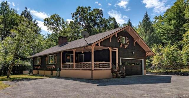 509 Hollow Road, Glen Spey, NY 12737 (MLS #H6069620) :: Frank Schiavone with William Raveis Real Estate