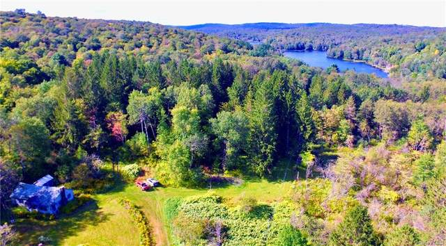 85 Trout Brook Road, Roscoe, NY 12776 (MLS #H6069706) :: Frank Schiavone with William Raveis Real Estate