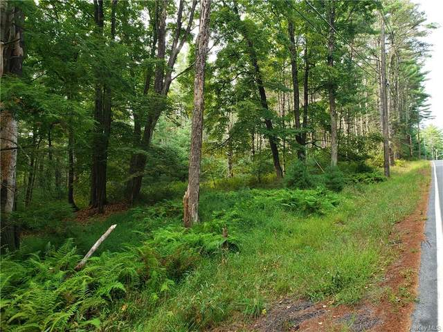 Forestburgh Road, Forestburgh, NY 12777 (MLS #H6069729) :: Frank Schiavone with William Raveis Real Estate