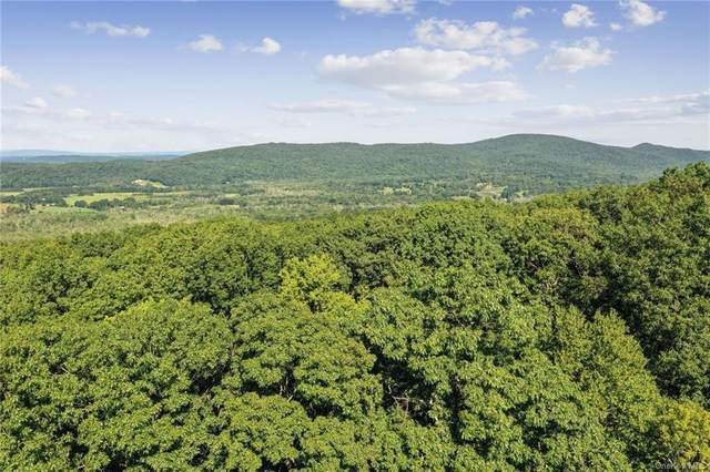 152 Still Road, Poughquag, NY 12570 (MLS #H6069738) :: Kendall Group Real Estate | Keller Williams