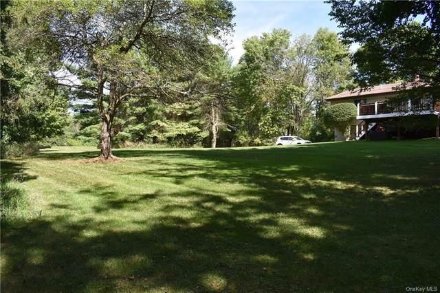 1 Ziegler Road, Lagrangeville, NY 12540 (MLS #H6069798) :: Frank Schiavone with William Raveis Real Estate