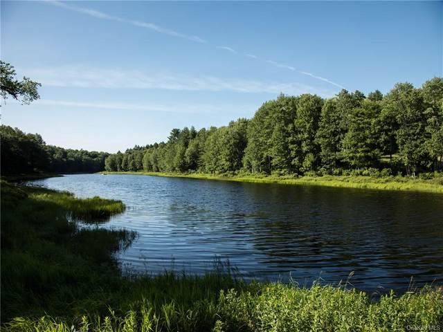 37 John Bishop Road, Swan Lake, NY 12783 (MLS #H6069844) :: William Raveis Baer & McIntosh