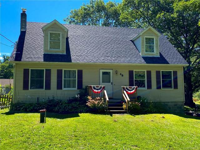 48 Sams Point Road, Cragsmoor, NY 12420 (MLS #H6070016) :: The Home Team