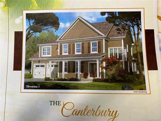 lot 11 Peale Place, Montgomery, NY 12549 (MLS #H6070084) :: Cronin & Company Real Estate