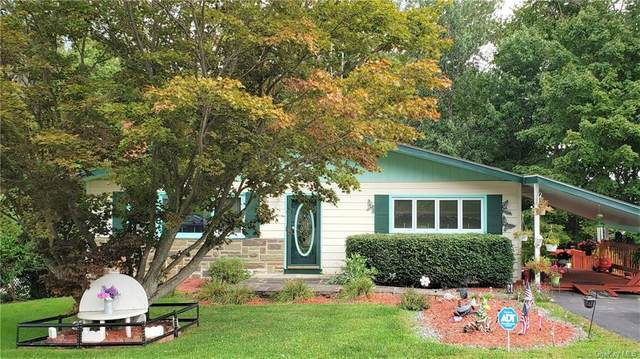 19 Burton Avenue, Monticello, NY 12701 (MLS #H6070104) :: William Raveis Baer & McIntosh
