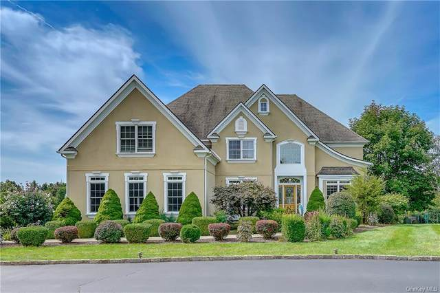 5 Trinity Way, Lagrangeville, NY 12540 (MLS #H6070144) :: Frank Schiavone with William Raveis Real Estate