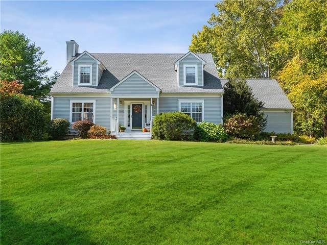 1 Tory Lane, Pawling, NY 12564 (MLS #H6070152) :: Kendall Group Real Estate | Keller Williams