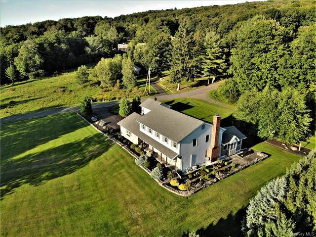 14 Grant-Sheeley Road, Grahamsville, NY 12740 (MLS #H6070260) :: William Raveis Baer & McIntosh
